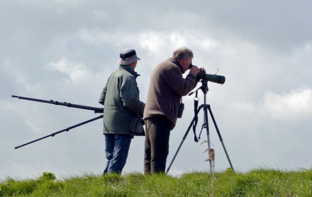 Birdwatchers at Cley North Norfolk