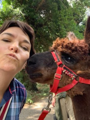 Alpaca kissing Amy